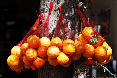 Appelsindalen