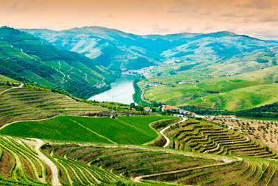 Vinlandet i Douro-Valley