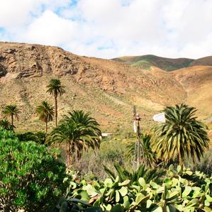 Vega de Rio Palma