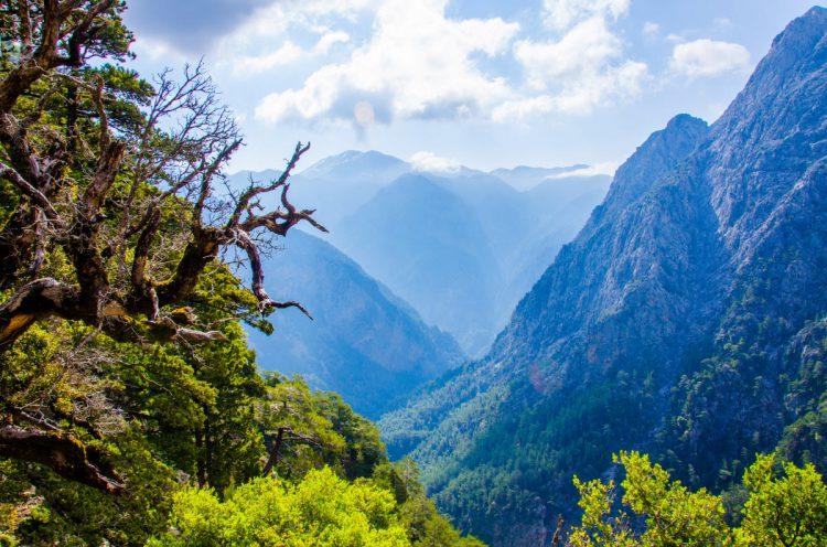 Den flotte udsigt over bjergene i Samaria kløften