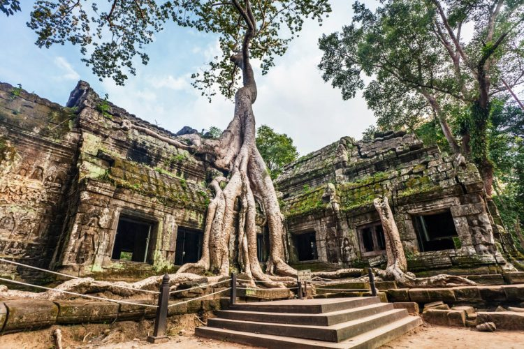 Ta Prohm Templet i Angkor Wat