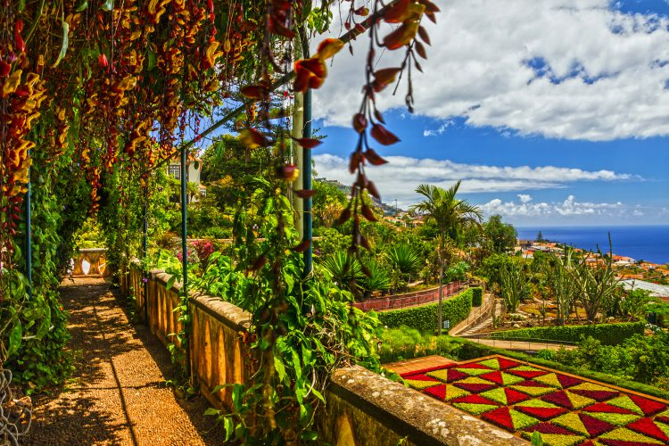 Den botaniske have i Monte