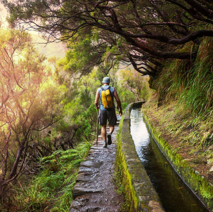 Smuk natur og masser af muligheder for vandretyre på Madeira