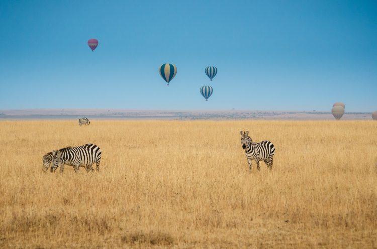 Den flotte udsigt fra ballonerne
